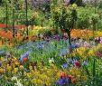 Jardin Fleur Charmant 65 Fresh Beautiful Spring Garden Landscaping for Front Yard