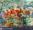 Jardin Fleuri Lyon 5 Charmant 330 3 Stock S & 330 3 Stock Alamy