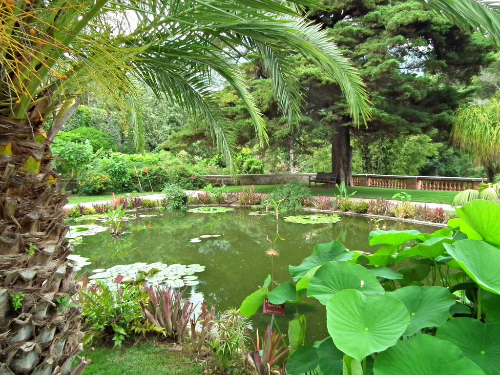 Jardin Menton Nouveau 15 Best Things to Do In Menton France the Crazy tourist Of 92 Charmant Jardin Menton