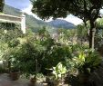 Jardin Nice Charmant File Majorque Valldemossa Chartreuse Musee Sand Chopin