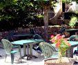 Jardin Nice Élégant Anti Fourmis Jardin