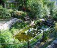 Jardin Nice Élégant the Provence Post Five Gorgeous Provence Gardens to Visit
