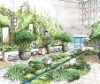 Jardin Paysagé Frais 230 Best Landscape Renderings Images