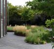 Jardin Paysager Élégant Discover Strategies to Create Your Garden Bloom Better