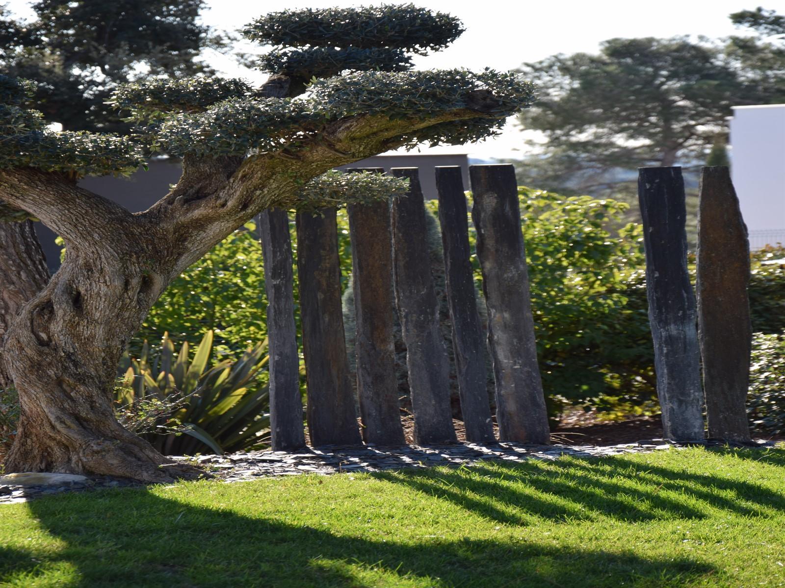 architecte paysagiste montpellier jardin exotique