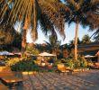 Jardin Piscine Inspirant S Madagascar Page 14