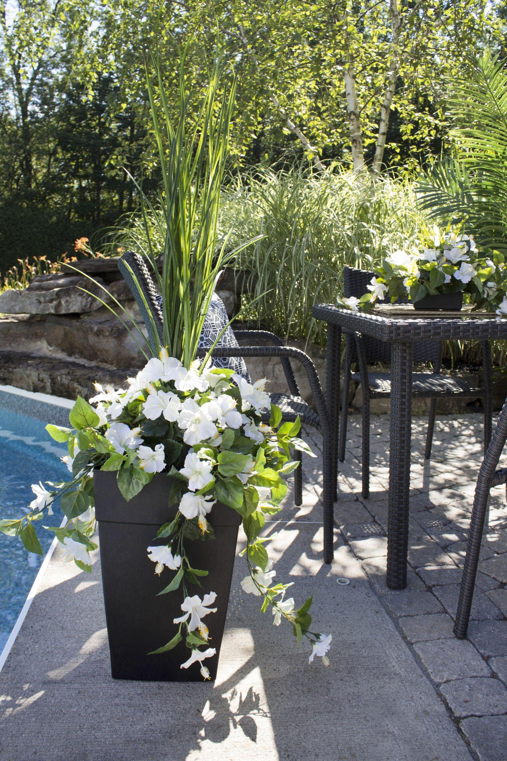 Jardin Service Frais 19 Tantalizing Plants Indoor Products Ideas Of 45 Nouveau Jardin Service