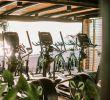 Jardin Tropical Élégant Hotel Jardn Tropical Ocean Gym Tenerife