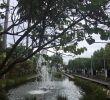 Jardin Tropical Frais Jardin De L Etat Saint Denis 2020 All You Need to Know