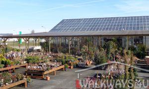 44 Luxe Jardin Val De Saone