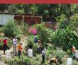 Le Jardin De Saint Adrien Frais where People and their Land are Safer A Pendium Of Good