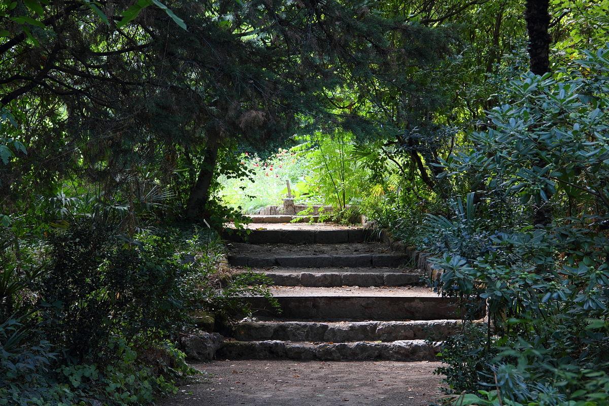 1200px Jardin des plantes Montpellier JPG