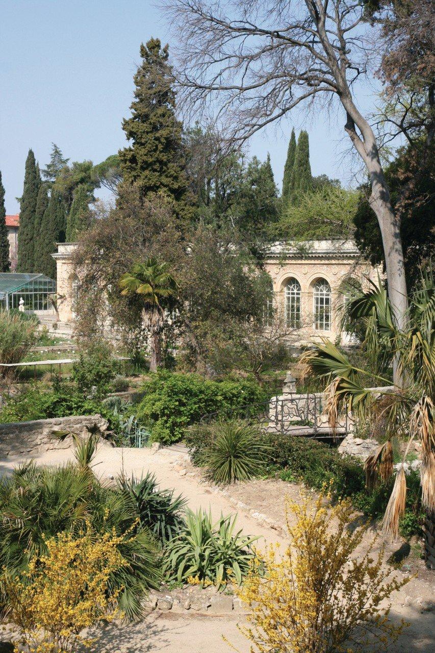 montpellier jardin des plantes