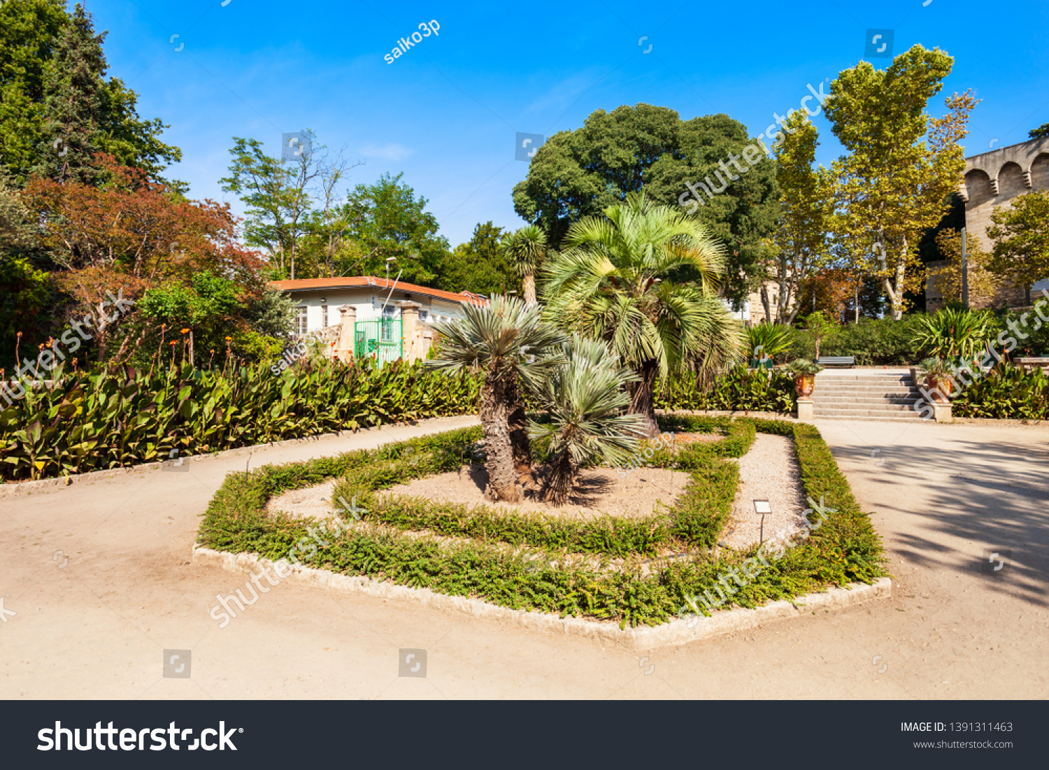stock photo the jardin des plantes de montpellier is a public botanical garden in montpellier city france