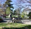 Le Jardin Des Plantes Montpellier Génial Reportage Montpellier Les Parcs Et Jardins  Ne Pas