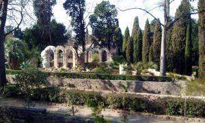 21 Charmant Le Jardin Des Plantes Montpellier