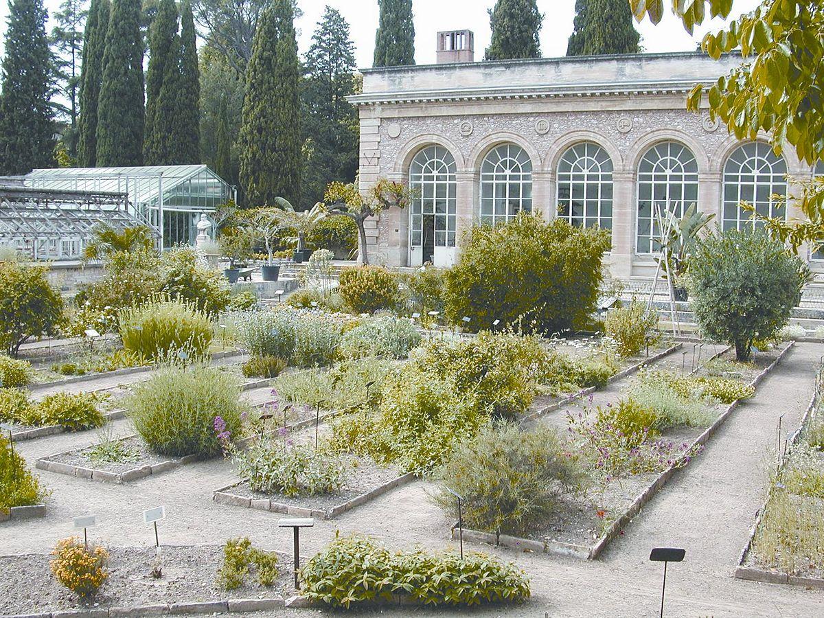 Le Jardin Des Plantes Montpellier Luxe Jardin Des Plantes De Montpellier Of 37 Inspirant Le Jardin Des Plantes Montpellier