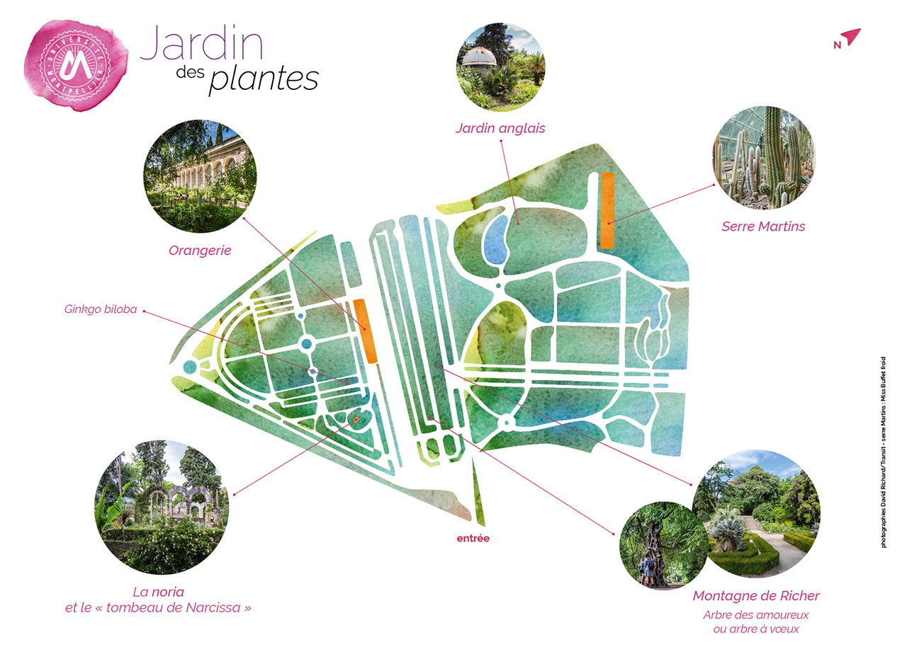 jardin des plantes plan