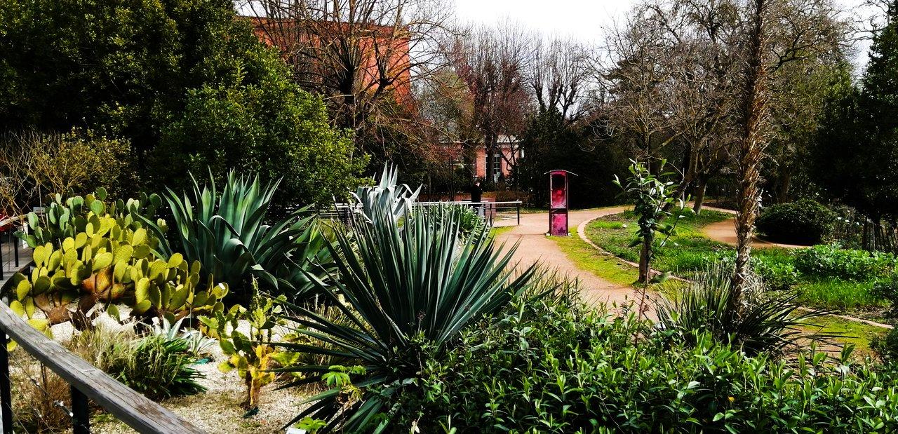 o jardim botanico