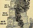 Le Jardin Du Thé Grenoble Beau 4 7 X W Stock S & 4 7 X W Stock Page 18 Alamy