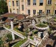 Le Jardin Du Thé Grenoble Élégant Jardin Rosa Mir Lyon 2020 All You Need to Know before