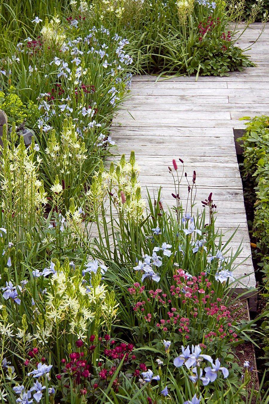 Les Jardin De sologne Génial 2692 Best Gardens Images In 2020 Of 65 Frais Les Jardin De sologne