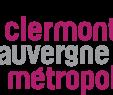 Massif Paysager Élégant Clermont Auvergne Métropole — Wikipédia