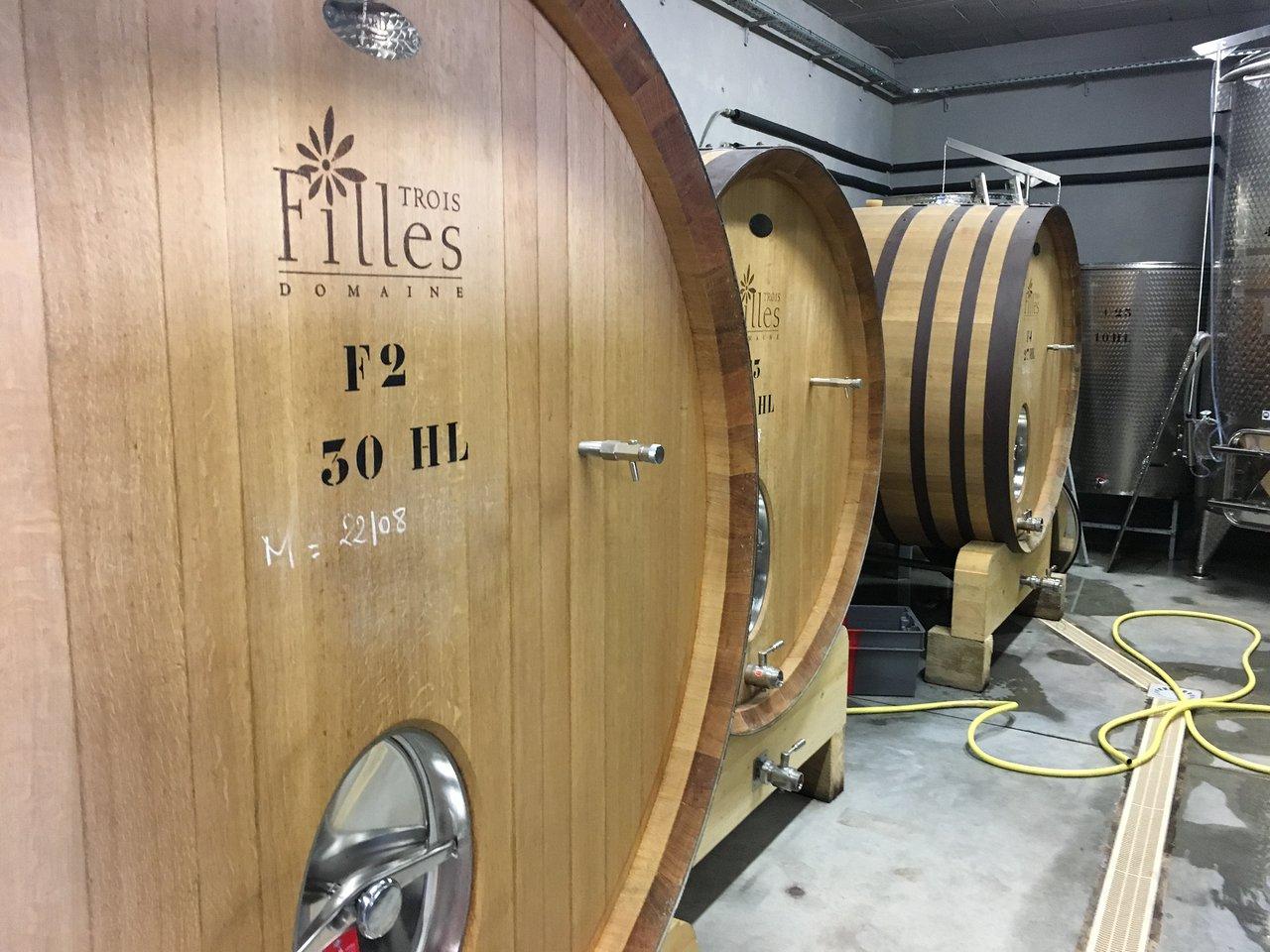 Massif Paysager Frais L Insolite Wine tour La Valette Du Var 2020 Ce Qu Il