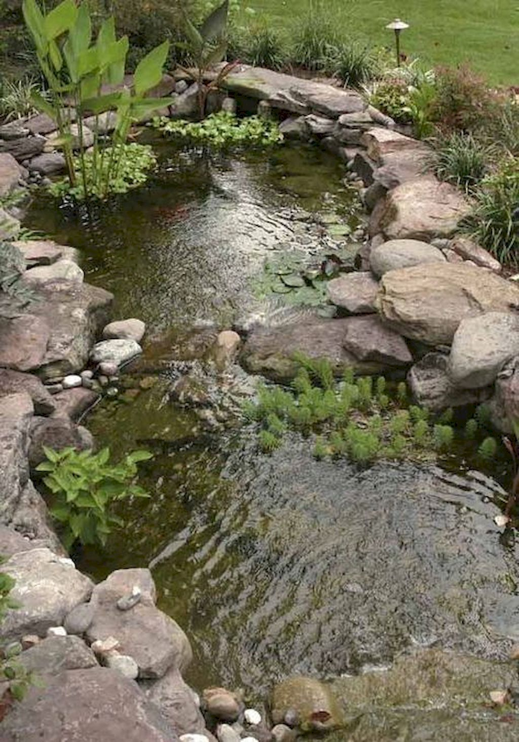 Massif Paysager Inspirant Seasonal Duties for Your Water Backyard Fish Pond