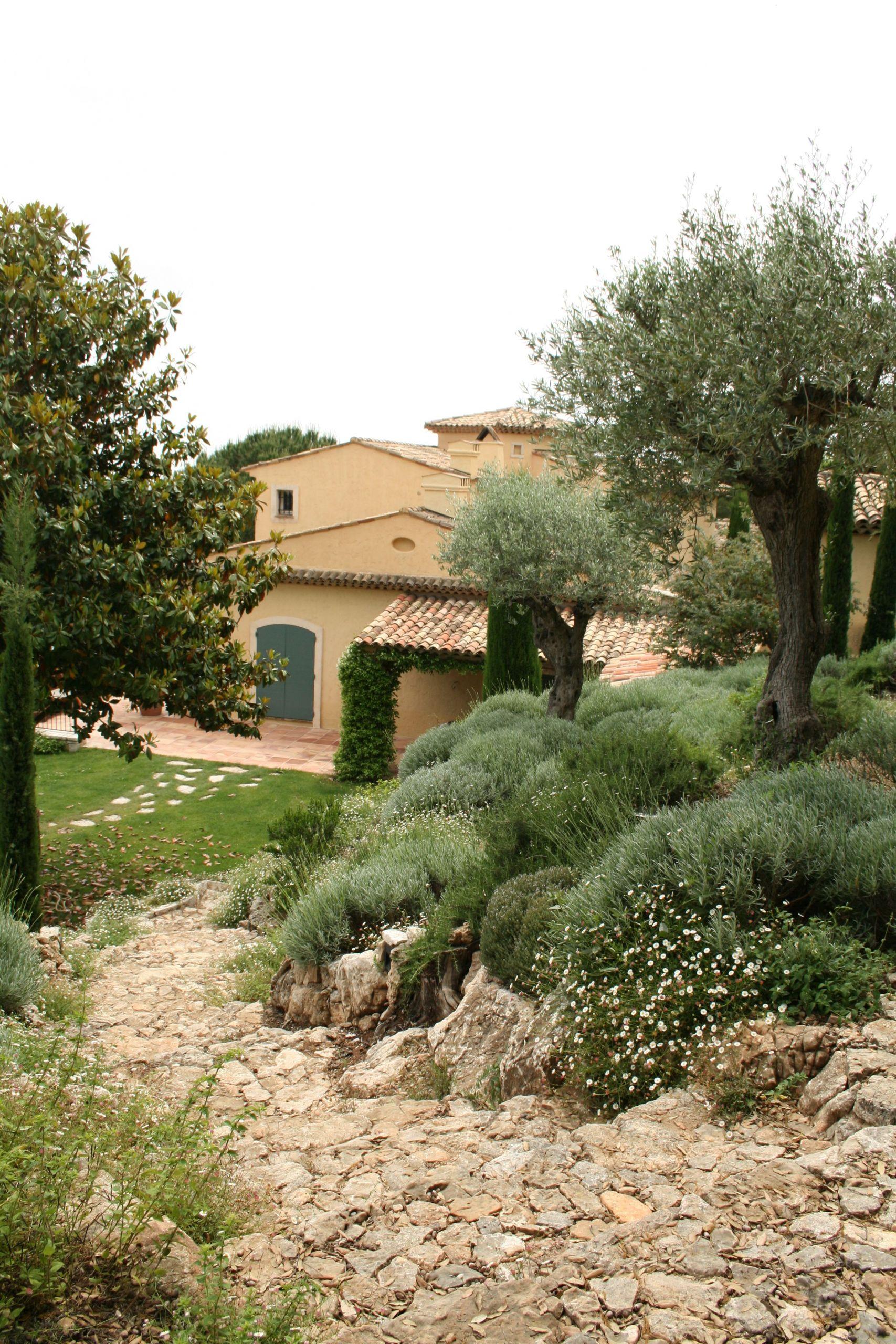 Massif Paysager Luxe Jean Mus Garden In Saint Paul De Vence