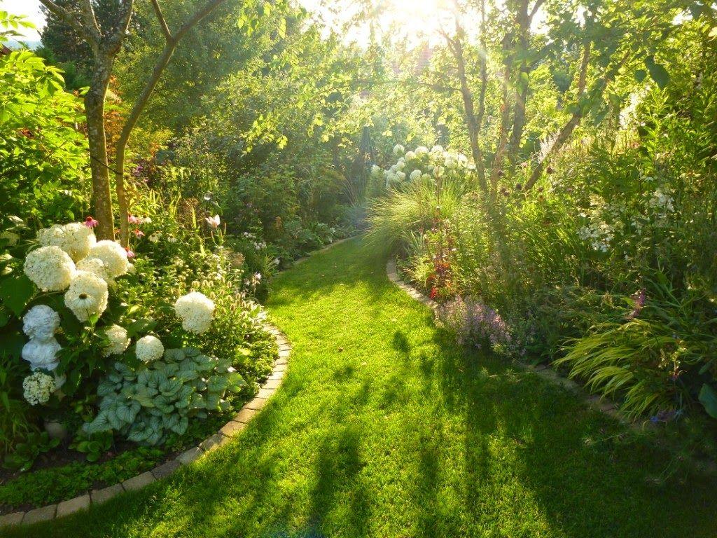 Massif Paysager Unique Le Jardin Des Grandes Vignes Con Imágenes