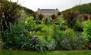 65 Unique Ménagerie Du Jardin Des Plantes