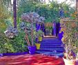 Modele Jardin Unique Fleurs Et Jardin  Marrakech Smart Marrakech