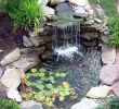 Prêter son Jardin Inspirant 999 Best Water Features Images In 2020