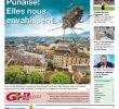 Punaise De Jardin Luxe Ghi 17 10 2018 Clients by Ghi & Lausanne Cités issuu