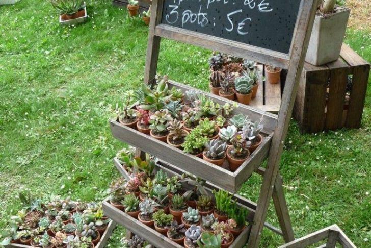 Recherche Jardinier Luxe Petites étag¨res Pour Un Maximum De Plantes Sur Un Minimum