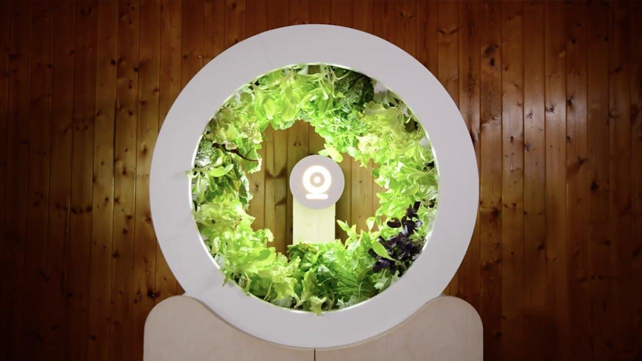 Salon De Jardin Truffaut Best Of Un Potager D Intérieur Circulaire Pour Cultiver Vos Légumes