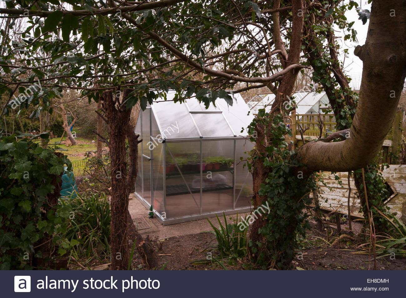 vue laterale d une serre de jardin en polycarbonate avec la porte fermee eh8dmh