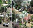 Table De Jardin Castorama Nouveau Cabane Jardin Castorama élégant Castorama Cabane De Jardin