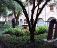 Univers Jardin Génial File Jardin En El Museo Nacional De Colombia Jpg Wikimedia