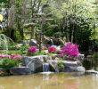 Versaille Jardin Élégant Japanese Garden On the island Of Versailles – Nantes