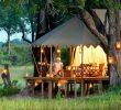 Tente Abri De Jardin Inspirant Duba Expedition Camp Okavango Delta Botswana