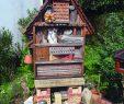 Abri De Jardin Permis De Construire Nouveau Fabriquer Un Abri € Insectes