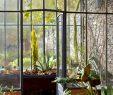 Abri De Jardin Permis De Construire Nouveau L Abri De Jardin Et Le Jardin D Hiver Deux Constructions