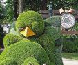 Coté Jardin Nantes Luxe Participez  Une Oeuvre Du Jardin Des Plantes De Nantes