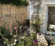 Entre Cours Et Jardin Charmant Location Ile De Ré Maison De Village Entre Cour Et Jardin
