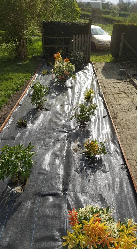 Entretien Parc Et Jardin Beau Création D Un Espace Vert Agris Parc Et Jardins Of 68 Unique Entretien Parc Et Jardin