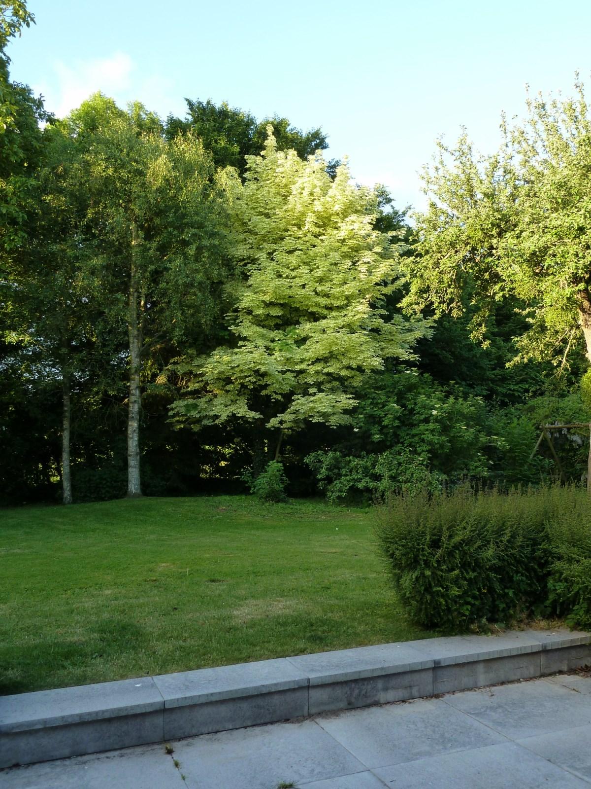 details services a la personne pour l entretien de votre jardin dans la region de ppe 720