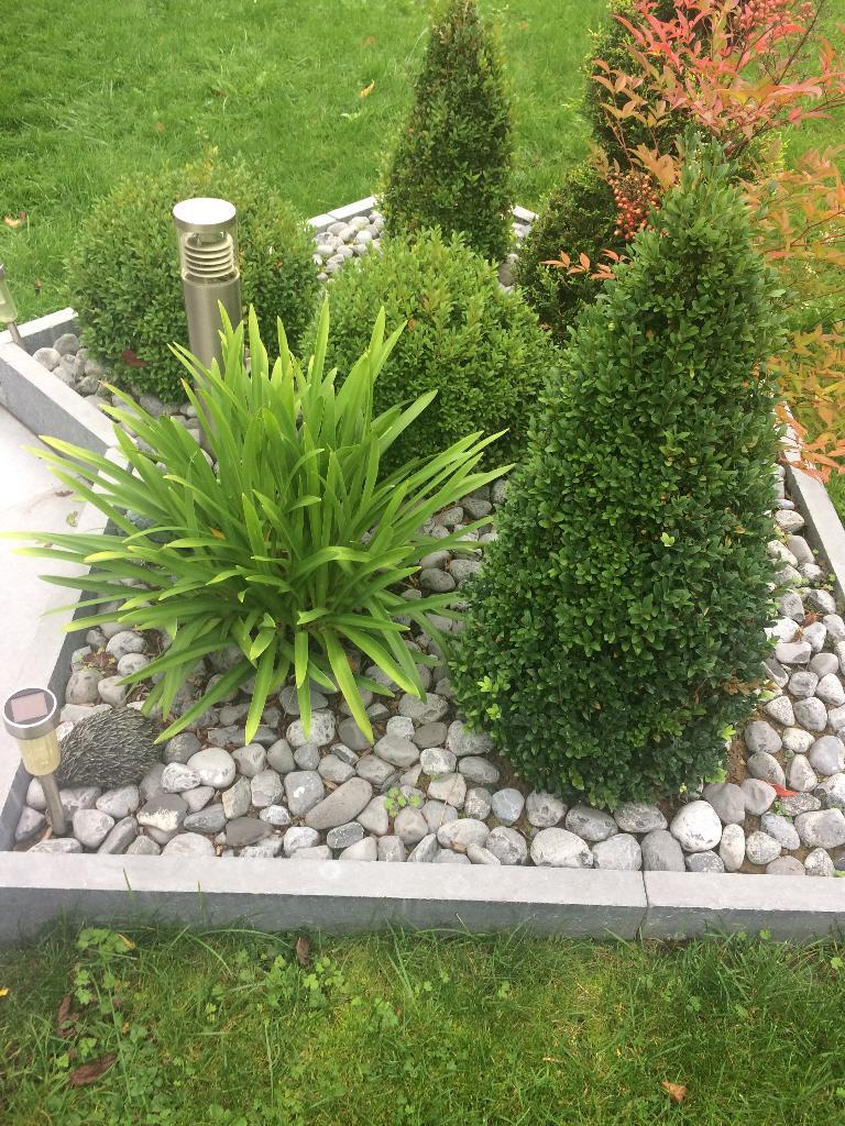 tavernier espaces et jardins eurl