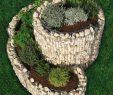 Faire Une Dalle Béton Pour Abri De Jardin Élégant La Jardini¨re Gabion En Spirale Le Potager De Votre Jardin